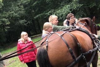 paardknuffelen